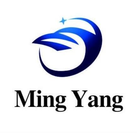 宁波佲洋船务公司